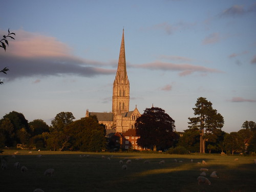 Salisbury Cathedral across the Water Meadows SWC Walk 254 Salisbury Circular