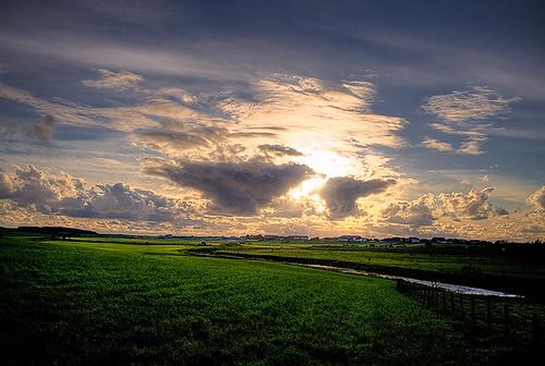 landscapes_13_20130312_1875729844