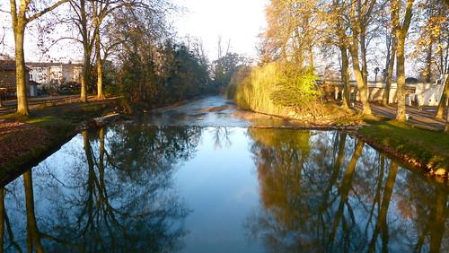 france tree water river de eau rivière le paysage arbre landes aquitaine béarn luy amou vanaspati1