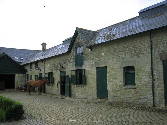 Housemartins, Wiltshire