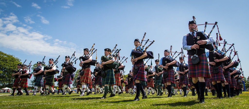 PIPERS by Donna Nelson