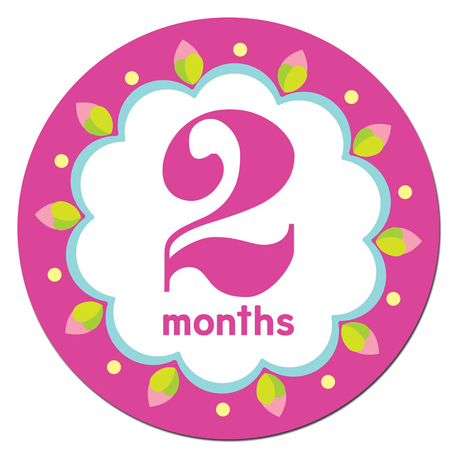 Kaliedoscope Cutie Sticky Bellies Baby Month Stickers