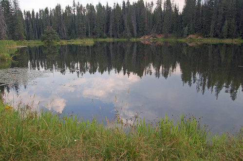 campbell ponds