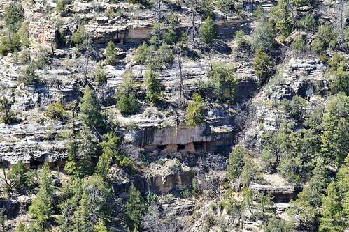 trees arizona usa rock nikon cliffs nativeamerican walnutcanyon i40 primitive stonehouse d7000