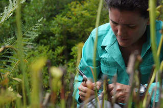 Becca Hale labeling a collection vial | by USFWS/Southeast