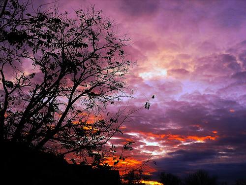 november morning sky | by Rody09