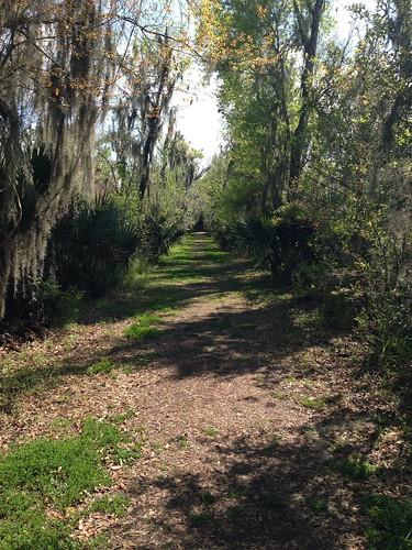 nature louisiana trail mandalay houma mandalaywildliferefuge