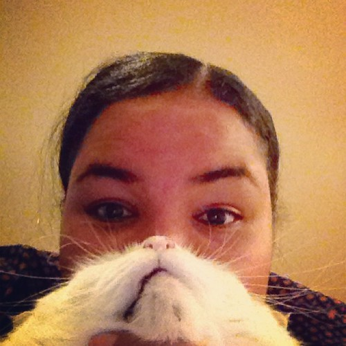 Cat beard. We party right. | by mujerboricua