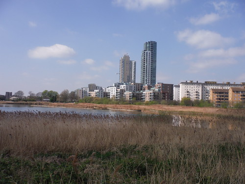 Reed Beds and New Builds, Woodberry Wetlands SWC Short Walk 26 - Woodberry Wetlands (Stoke Newington Reservoirs)