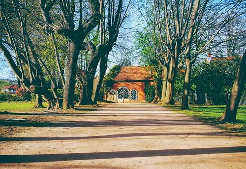 Home sweet home --- Parc de Cebazat | Samir Mohamed | Flickr