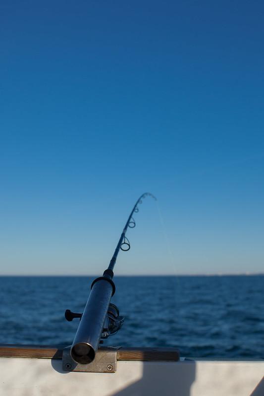 Pêche - Fishing - https://www.twin-loc.fr