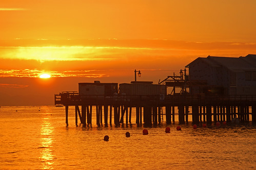stearnswharf pier santabarbara california sunrise silhouette december 2004 nikon d100 nikond100 cloudy day free creativecommons
