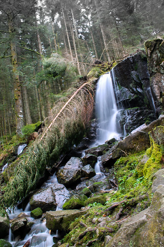 trip travel trees mountain france nature water forest montagne landscape waterfall eau view arbres paysage cascade vue forêt vosges vaoyage