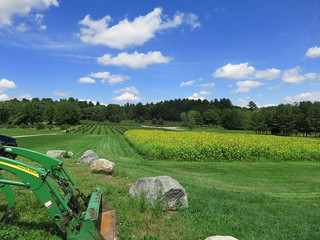 Peterson Farm, Glocester RI | by Rick Payette