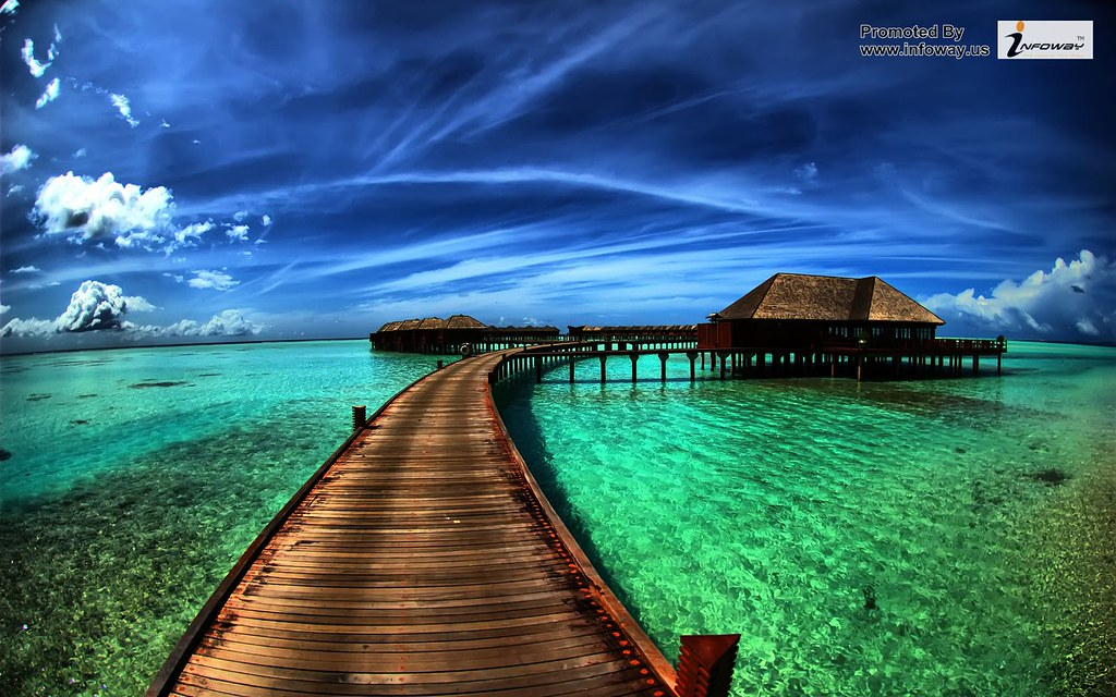 Best Beautiful Mix Nature Hd Wallpapers Nature Wallpapers