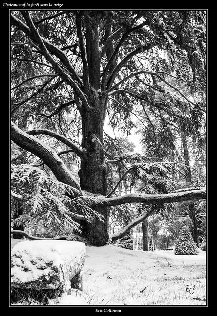 Chateauneuf-la-forêt sous la neige