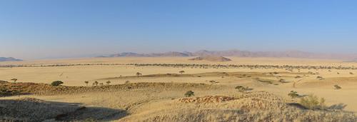 africa nationalpark desert namibia namib namibnaukluft