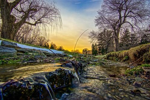 stream sunset water sky trees