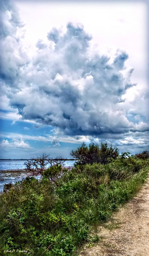 alongbiolabrd merrittislandnationalwildliferefuge merrittislandfl nasa spacecoast nature dirtroad storm stormclouds scenic landscape water