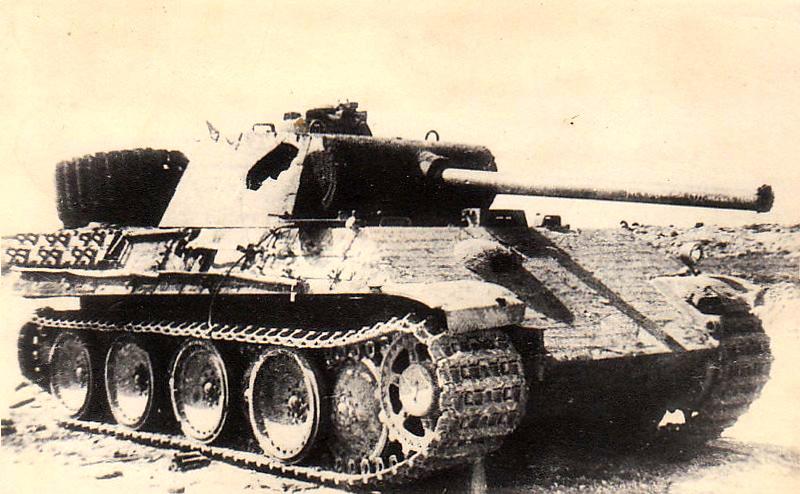 黑豹(4)