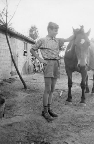 Herman-Wildenbeest-met-paard   by jcrutgers