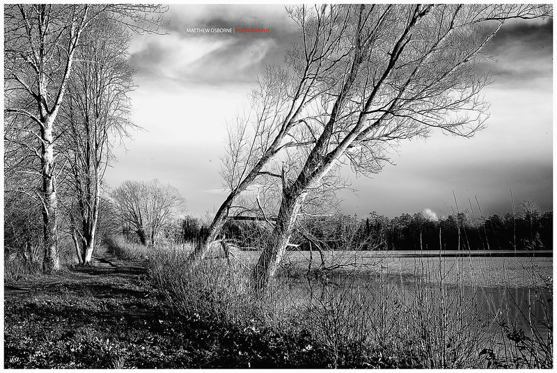 Leica Summicron 50/2