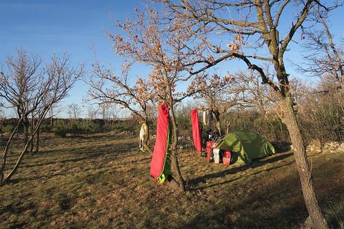 Camping spot morning ventilation   by najuste