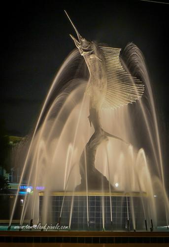 fountain statue sailfish sailfishfountain night nightshot water lights stuart florida usa cityscape icon iconic