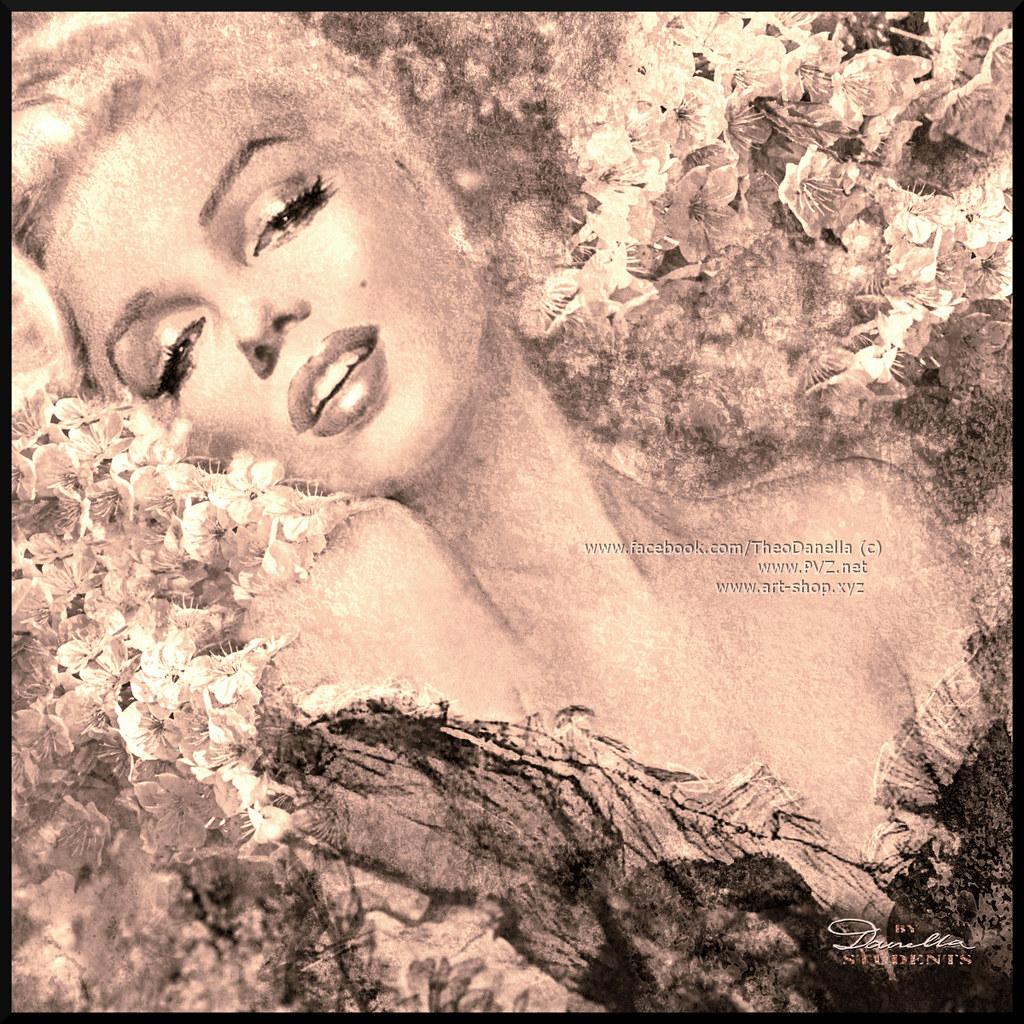 Marilyn Cherry Blossoms b sepia fb