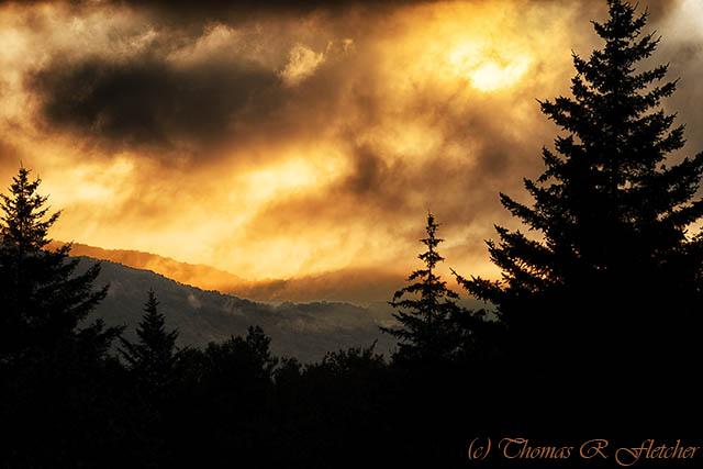 Foggy Sunrise Highland Scenic Highway