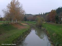 Il fiume Senio