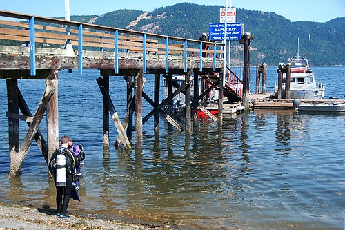 Divers at the Government Wharf in Maple Bay, Vancouver Island, British Columbia, Canada