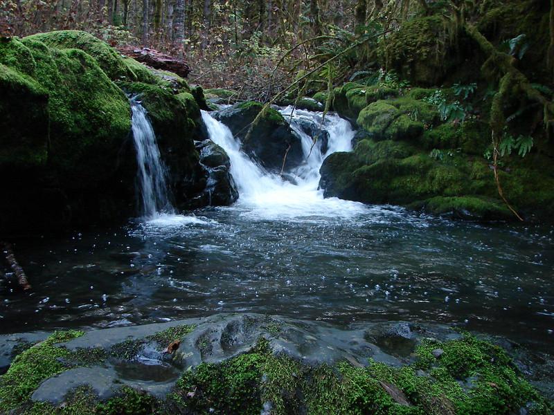 Small Falls on a branch of Goodman Creek