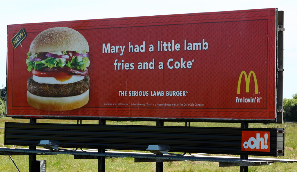 1649 I saw this hilarious billboard along the Hume Highway