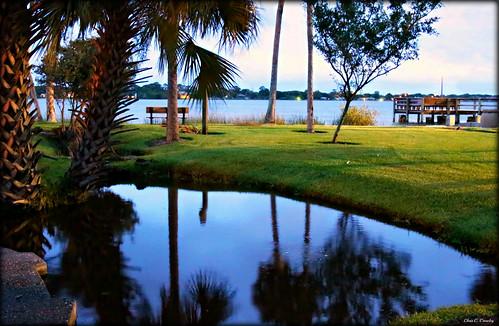 amesparkattwilight amespark ormondbeachflorida twilight sundown reflections rive pond halifaxriver palmtrees dock grass outdoors park scenic landscape