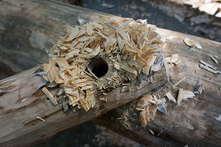 Grindbygg Peg Hole Shavings | by goingslowly