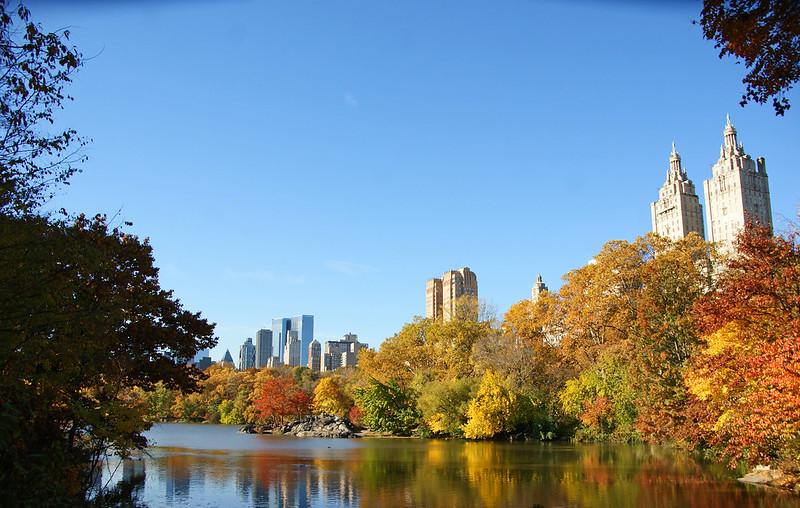 Central Park 11/13