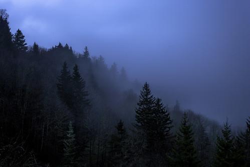 gsmnp greatsmokymountainsnationalpark smokymountains nationalpark oconaluftee overlook bluehour sunrise appalachian mountains mountain