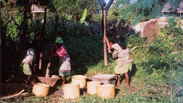 Madagascar2002 - 53