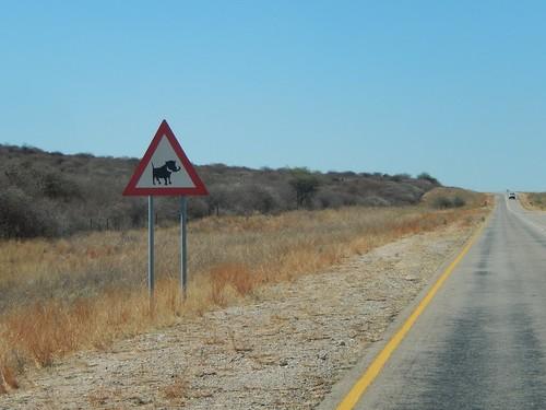 Tussen Windhoek en Wearvers Rock - pas op zwijnen