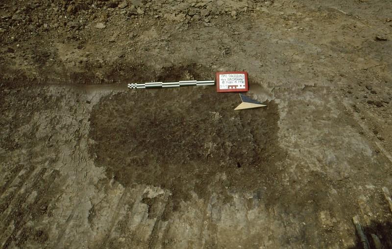 Collecchio 1992-0008