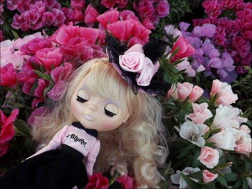 2017-04   by Panno Inno and her Blythes