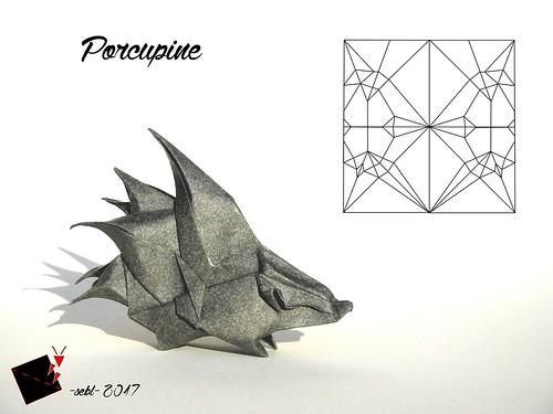 Porcupine | by -sebl-