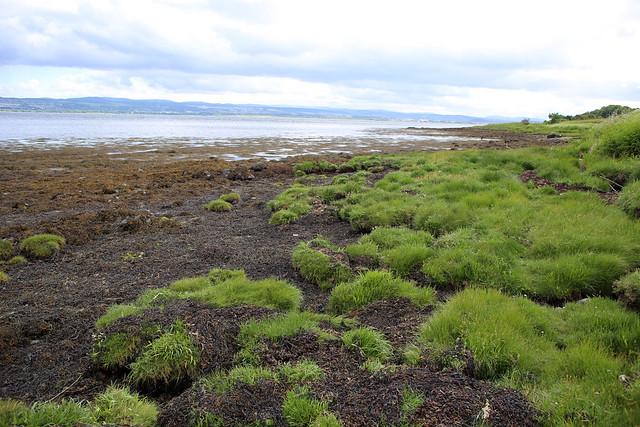 The coast north of Kilmuir