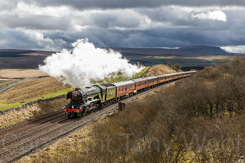 31st March 2017 LNER A3 60103 Flying Scotsman passing Salt Lake cottages approaching Ribblehead with the Settle & Carlisle re-opening special from the Keighley & Worth Valley Railway to Carlisle and return. The train was marking the first day of resumption of through services on the route following the repair of the landslip which occurred at Eden Brows just over a year ago.