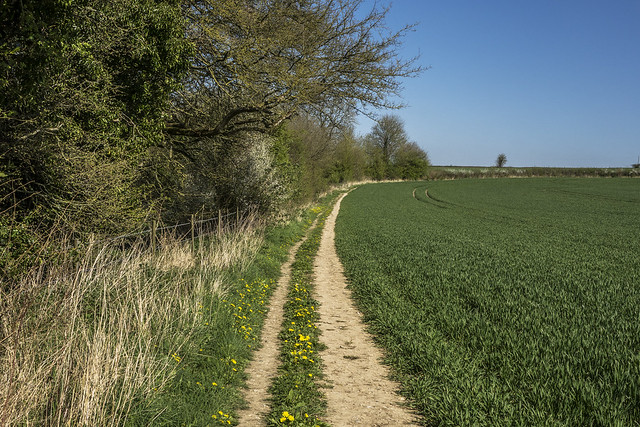 The Footpath to Werg