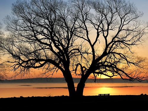 westgrandtraversebay sunrise traversecity michigan grandtraversecounty usa