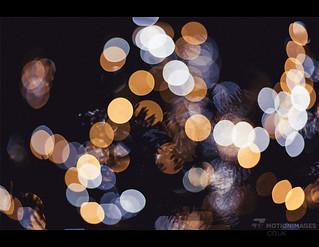 Edinburgh Christmas Market - 0244   by motion-images