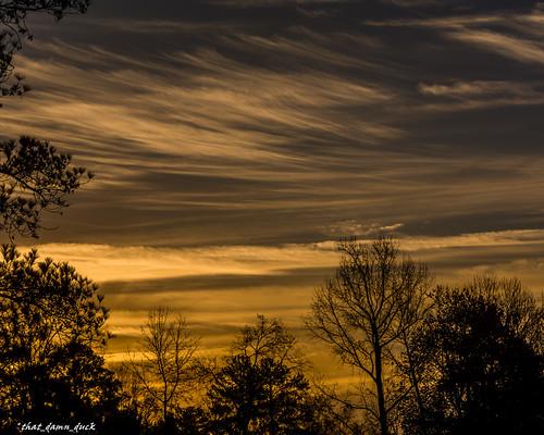 nature clouds sunset trees sundown landscape