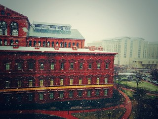 Fluffy flakes in front of the National Building Museum